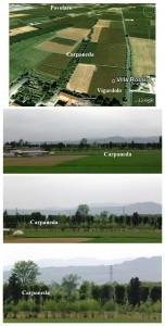 Carpaneda Vigardolo