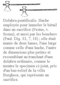 Dolabra3