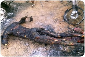 christians-burned-alive-in-nigeria-resized