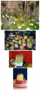 li jardini de adone