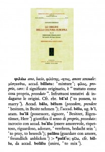 fileo phileo 306 307