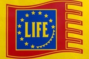life s