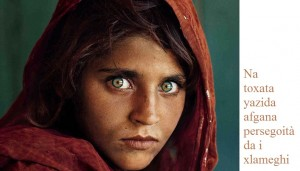 afghana yazida