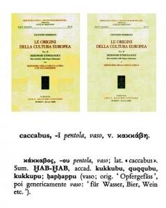 caccabus