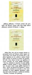pileo pilos