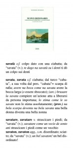 savata 233