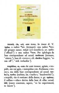 tremo trepidus 593