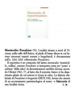 Montecio Bregançin 487