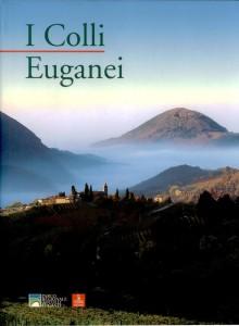 Copia di kw Colli Euganei
