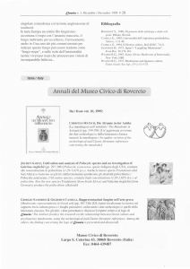 Xamanixmo çinexe.pdf_page_8