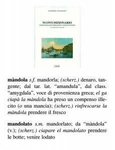 mandola 148