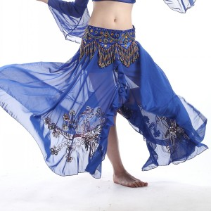 Belly-dance-skirt-belly-dance-(1)