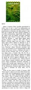 aponus  1