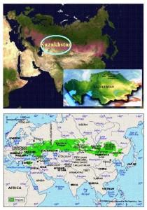 conp stepa kaxakhstan