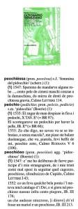 peochio 979