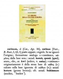 catinum 363