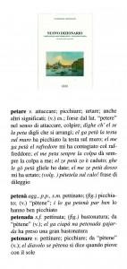 petenar 191
