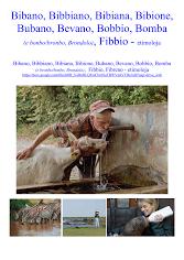 Bibano Bubano Bobbio Bibione