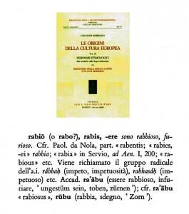 rabio 541