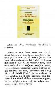 salvus 554
