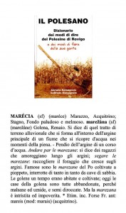 marecia 395