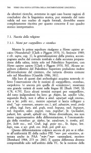 sepelir 566